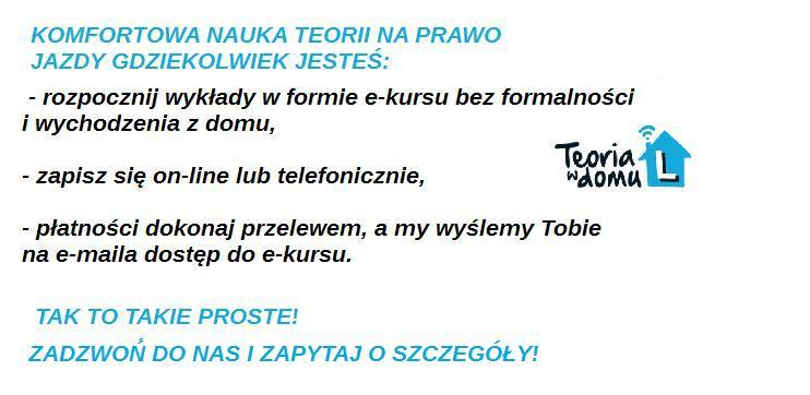 TEORIA_Z_BEZ_LOGA